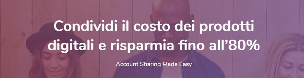 account sharing netflix spotify