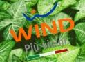 Wind All Inclusive 40 Limited Edition a 8,99 euro al mese